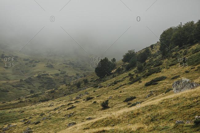 Hillside in the Midi Pyrenees with dense fog