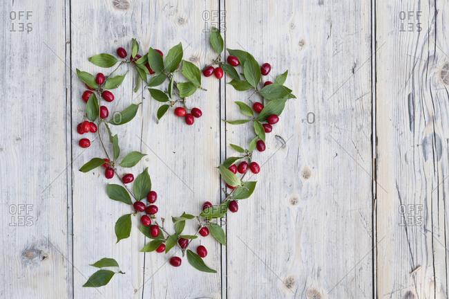 Green twigs and Cornelian cherries (Cornus mas) arranged in shape of heart