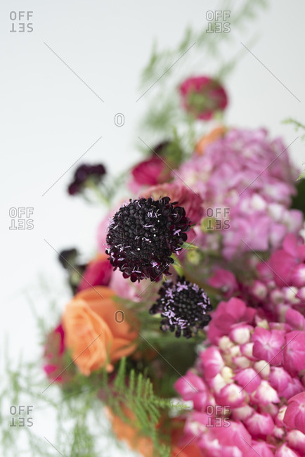 Pink and purple bouquet of summer flowers