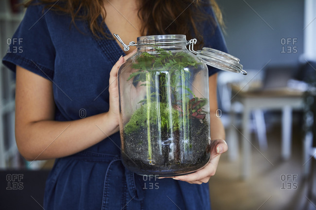 Close-up of woman holding terrarium in glass jar at home