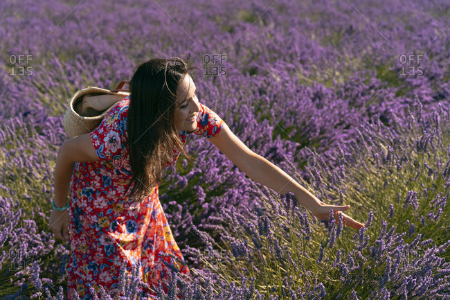 Beautiful woman touching lavender blooming in field