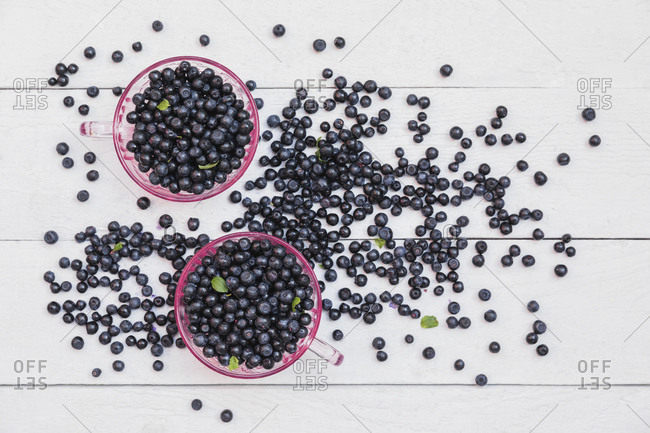 Two bowls of fresh wild blueberries