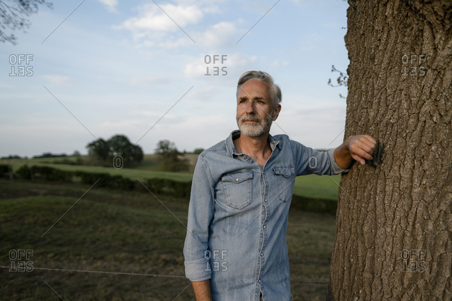 Content mature man leaning against a tree trunk in the countryside