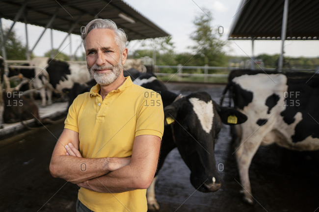 Portrait of a confident mature farmer at cow house on a farm