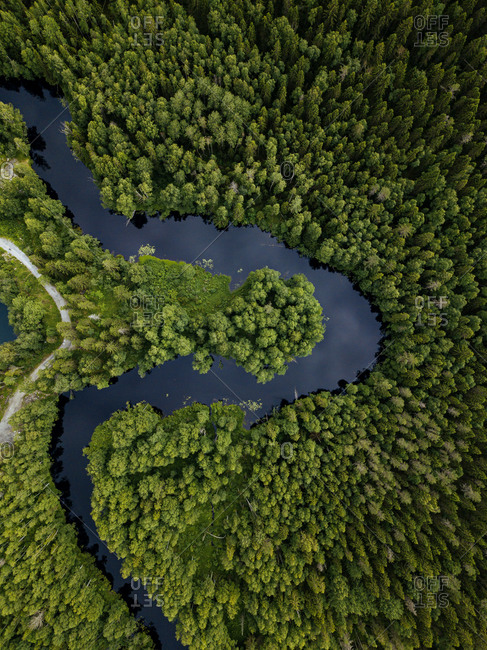 Russia- Republic of Karelia- Sortavala- Aerial view of green forest surrounding curve ofTohmajokiriver in summer