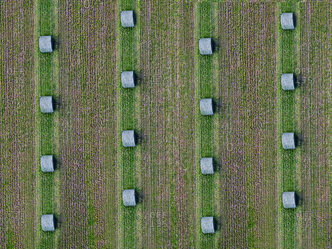 Aerial view of rows of bales lying in green field