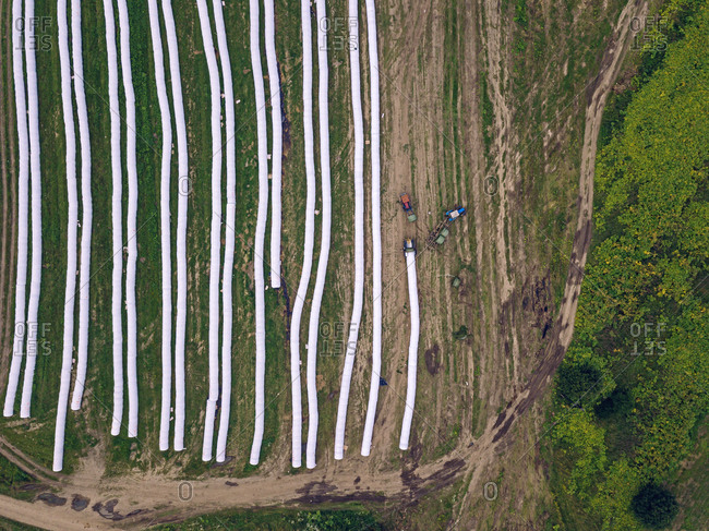 Aerial view of wrapped hay bales drying in field