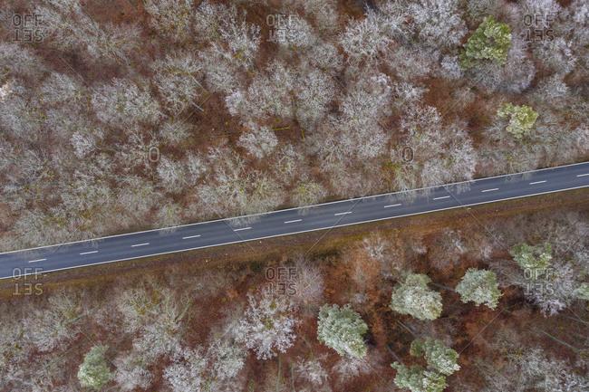 Germany- Bavaria- Drone view of asphalt road cutting through Steigerwald forest in winter