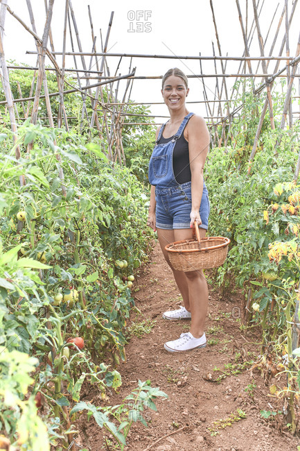 Woman with wicker basket in greenhouse with tomato plants