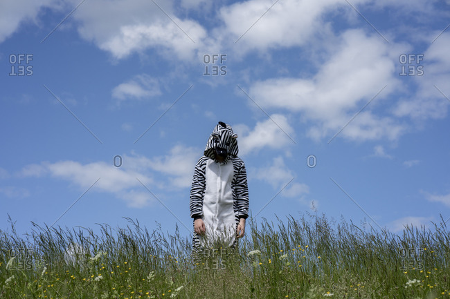 Boy wearing zebra costume standing amidst grass against blue sky