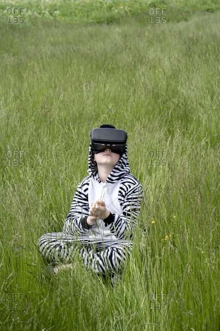 Boy in zebra costume using VR simulator while sitting on grass