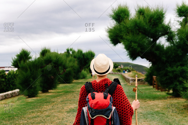 Back view of unrecognizable female backpacker with trekking stick crossing green hill with lush foliage while walking Camino de Santiago in Asturias in Spain