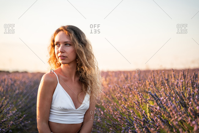 Carefree romantic young female in summer outfit sitting amidst lavender field looking away in summer evening