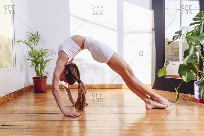 Side view of flexible female in activewear practicing yoga in Urdhva Dhanurasana on wooden floor in living room lit by sunlight