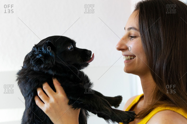 Side view of smiling female owner looking at charming black puppy while standing at home
