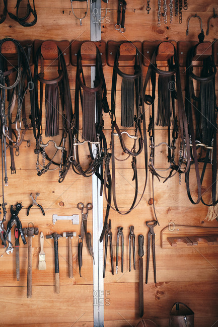 Collection of assorted harness and tools for horseback riding hanging on wooden wall in barn on ranch