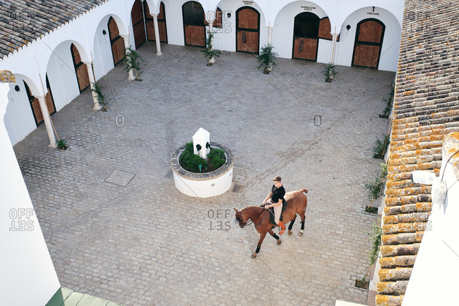 From above of male equestrian riding chestnut horse around courtyard on ranch during dressage on sunny day