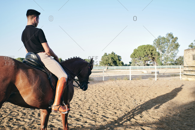 Side view of male equestrian in boots and uniform riding horse on sand arena on ranch during training