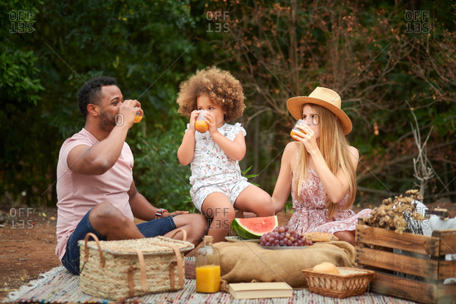 Positive healthy mixed race family with little daughter drinking natural orange juice while having picnic with fresh fruits in summer day in nature
