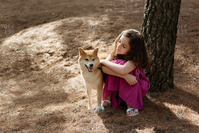 From above full length of positive tranquil little girl embracing adorable Shiba Inu dog while sitting together near tree trunk in summer forest