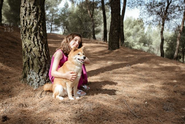 Full length of positive tranquil little girl embracing adorable Shiba Inu dog while sitting together near tree trunk in summer forest