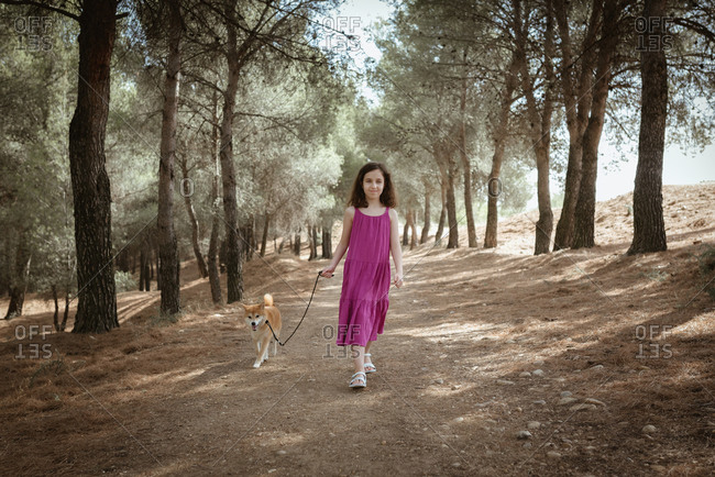 Full length of happy little child in colorful summer dress holding leash of obedient Shiba Inu dog while standing together in forest