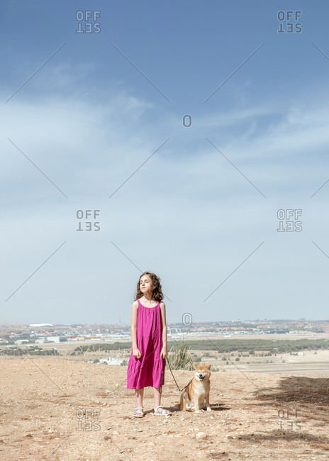 Little girl in dress standing with cute obedient purebred Shiba Inu dog on hill while spending summer day together in countryside