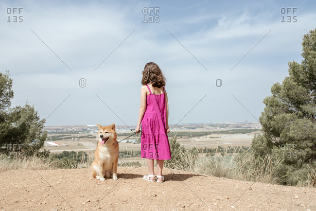 Back view of unrecognizable little girl in dress standing with cute obedient purebred Shiba Inu dog on hill while spending summer day together in countryside