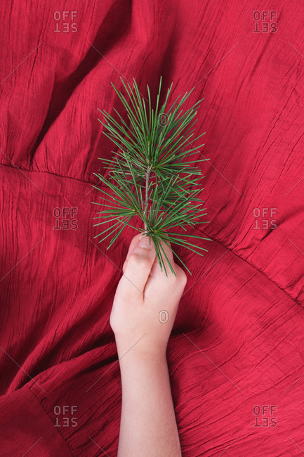 From above of crop anonymous girl in red summer dress holding green pine tree branch in hand