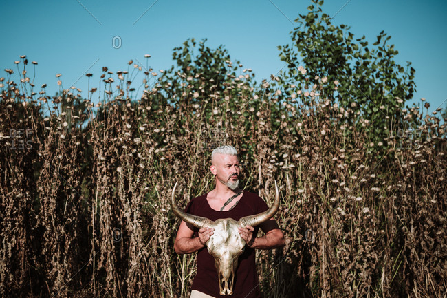Serious muscular bearded gray haired male with tattoo holding horn animal skull while standing against tall grass and blue sky in nature