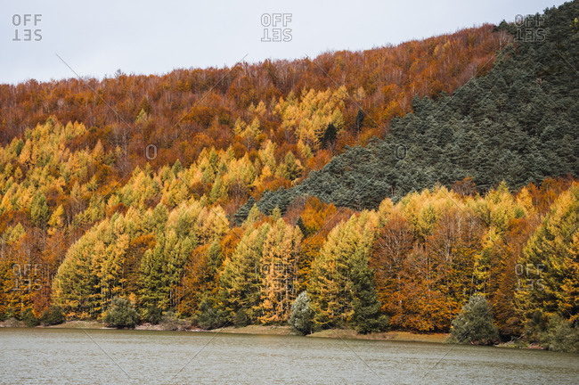 Peaceful landscape of calm lake surrounded by orange trees of Irati Forest in Navarra