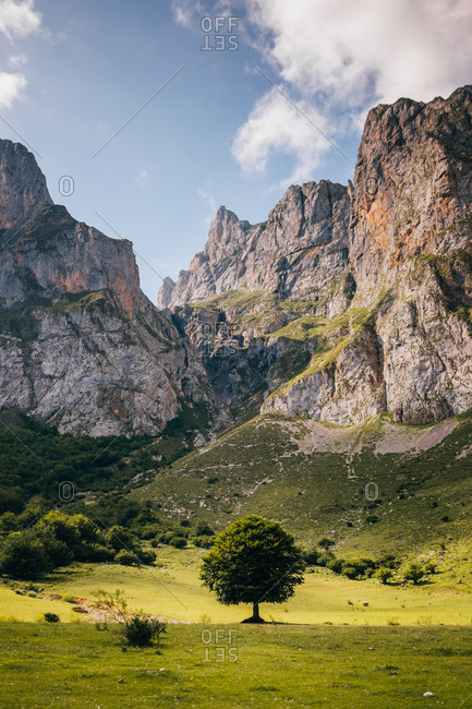 Majestic landscape of Picos de Europa mountain range and green valley with trees on sunny day in Asturias