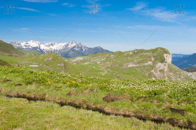 France,  Savoie,  mountain pastures and glaciers at the col des saisies