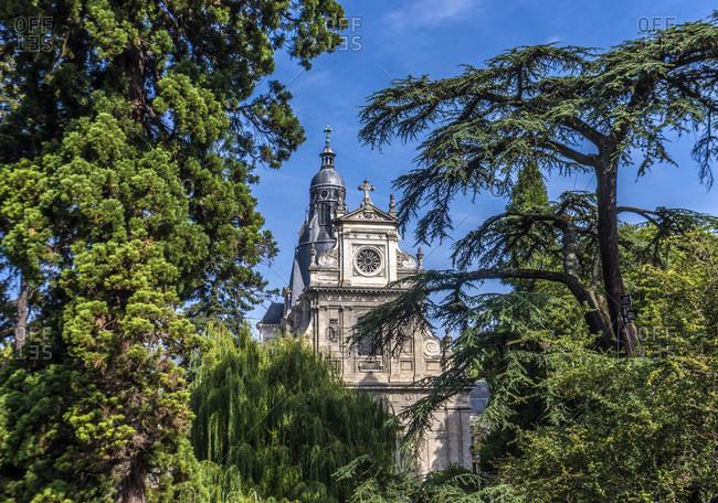France,  Center-Val de Loire,  Loir et Cher,  Blois,  trees of the square Thierry and Saint Vincent-de-Paul church (17th century)