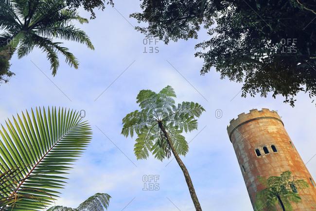 Usa,  Porto Rico,  El Yunque,  forest. Yokah�,  observation tower