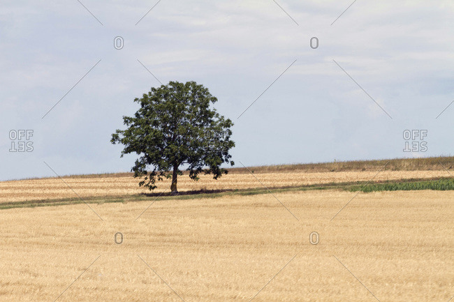 France,  landscape seen from a national road.
