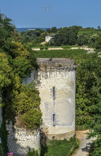 France,  Center-Val de Loire,  Indre-et-Loire,  Chinon,  tower of the royal fortress and landscape of vines
