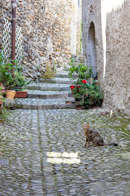 Lane of the village Saint Lizier in the department of Ariege,  Pyrenees,  Occitanie,  France