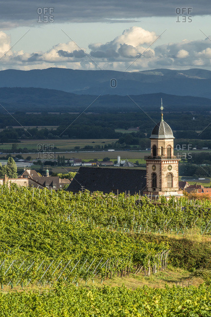 France,  Alsace,  Wine Route,  vineyard and village of Saint Hippolyte