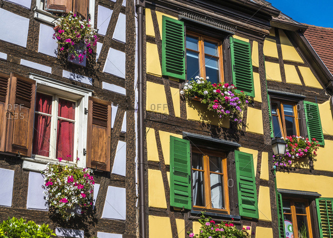 France,  Alsace,  Wine Route,  Ribeauville,  mauve and yellow half-timbered houses