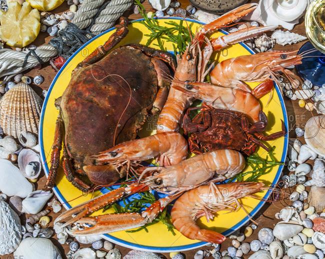 France,  Arcachon bay,  seafood platter