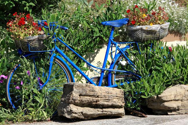 France,  Pas-de-Calais,  Adres,  bicycle as flowerpot