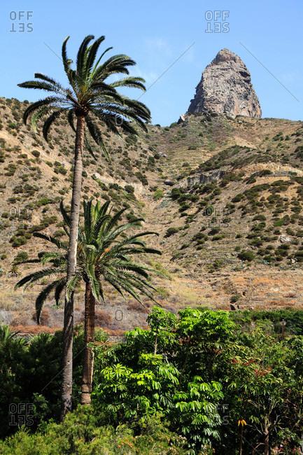 Spain,  canary islands,  Gomera,  Vallehermoso