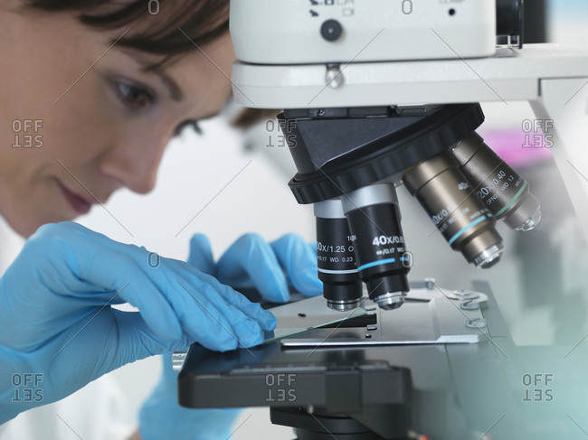 Medical testing of variety of human samples including blood and tissue under microscope in laboratory