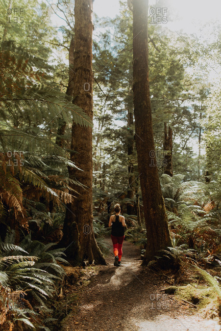 Woman jogging in forest, Queenstown, Canterbury, New Zealand