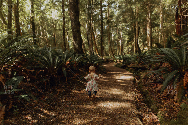 Baby girl exploring forest, Queenstown, Canterbury, New Zealand