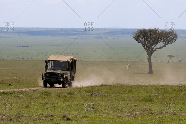 September 12, 2011: Off road vehicle in safari, Masai Mara National Reserve, Kenya