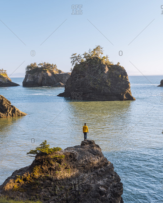 Man overlooking rugged coastline, Oregon, USA