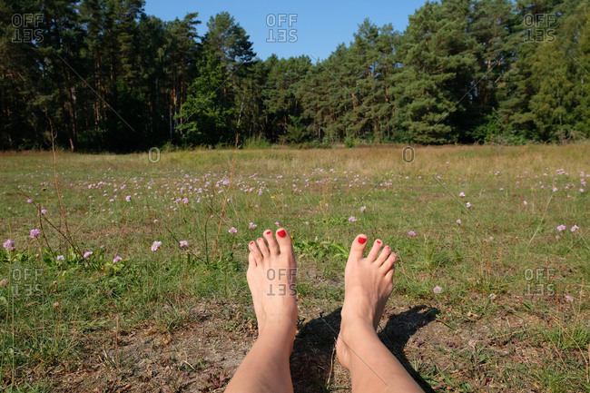 Woman's feet with red toenails relaxing in a field