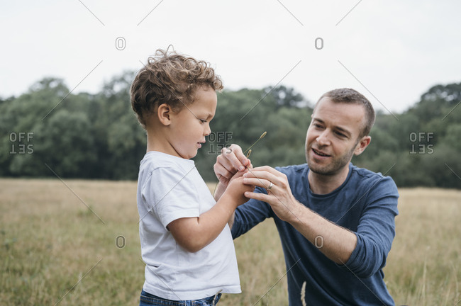 Happy father in field playing with his son